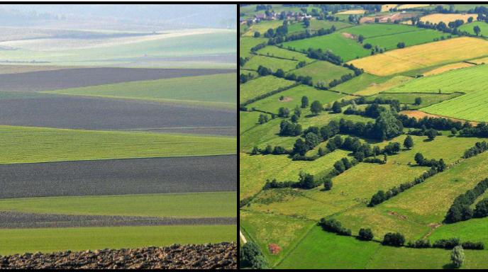 impact filières agroalimentaires sur les territoires