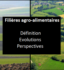 Filières agro-alimentaires et territoires : comprendre les interactions